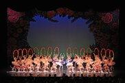 平成29年度乙訓文化芸術祭「'18バレエの祭典」