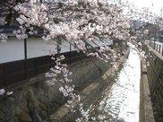 江名子川沿い