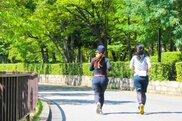梅薫る楠でスロージョギング