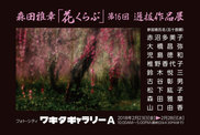 森田雅章「花くらぶ」第16回選抜作品展