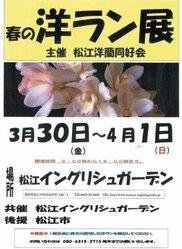 松江洋蘭同好会 春の洋ラン展