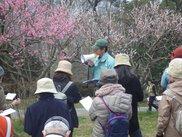 四季と自然を楽しむ会(3月)
