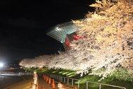 埼玉スタジアム2002公園