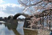 錦帯橋周辺
