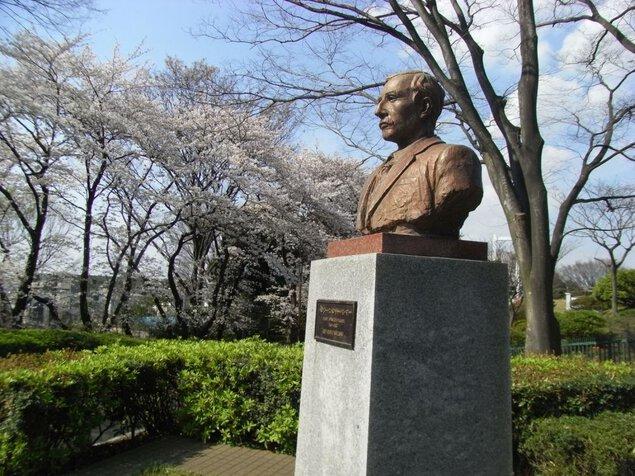 横浜市立野毛山動物園・野毛山公園の桜