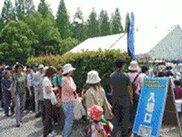 スワップミート in 花博公園(3月)