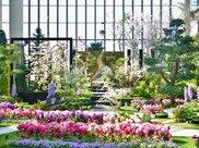 春爛漫 花見の庭2018