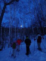 滝野の森 夕暮れツアー
