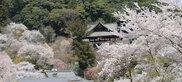 春季特別寺宝展(西国関連)