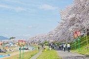 2018 岡山さくらカーニバル