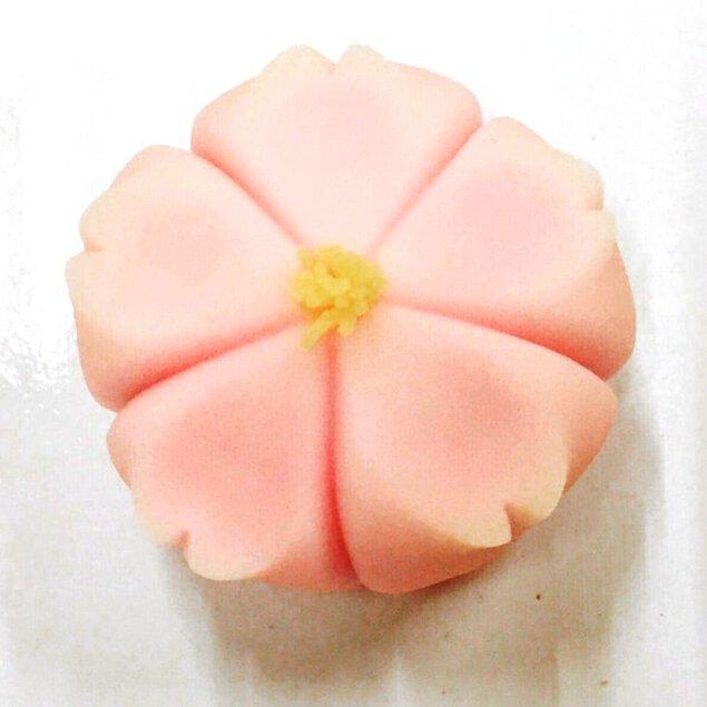 茶道具 青峰堂×玉浦屋「楽しい!美味しい!和菓子づくりとお抹茶教室」