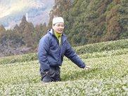 静岡トップブランド農園を訪ねる旅1 天竜春野・栗崎園で全国茶品評会日本一のお茶を味わうツアー