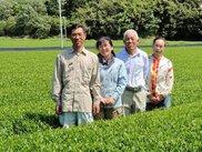 静岡トップブランド農園を訪ねる旅3 島田・カネトウ三浦園で世界農業遺産の茶畑を見学ツアー