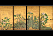 春季 特別名宝展「花鳥の美」