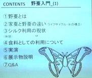 繊維技術研究会講演会「野蚕入門(2)タサールサンを掘り下げる」