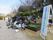 「お絵かき花壇づくりコンテスト」作品展示