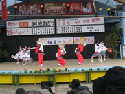 リニューアルオープンオアシス桜まつり2018