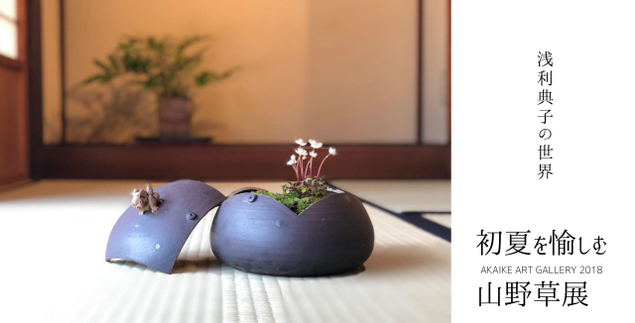 初夏を愉しむ山野草展-浅利典子の世界-AKAIKE ART GALLEY