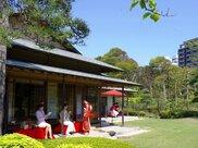 見浜園茶の湯 ~新緑の会~