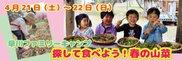 早川ファミリーキャンプ 探して食べよう!春の山菜