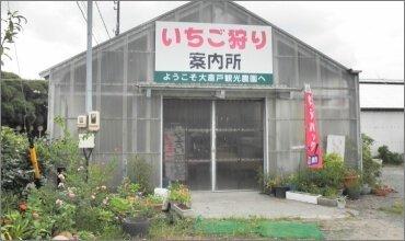 大倉戸観光農園