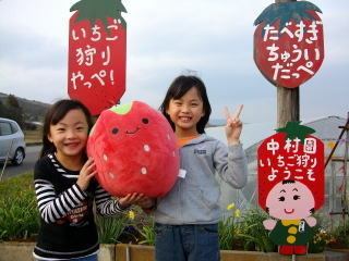 【開催終了】中村いちご園 いちご狩り