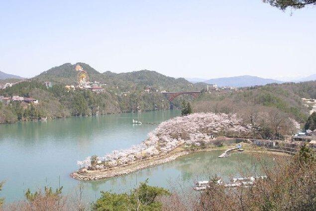 恵那峡の桜