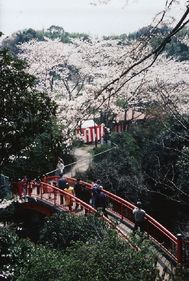 大井関公園