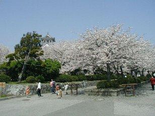 豊公園(長浜城)