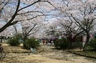 佐原公園(諏訪公園)