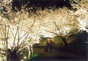 県立桃陵公園