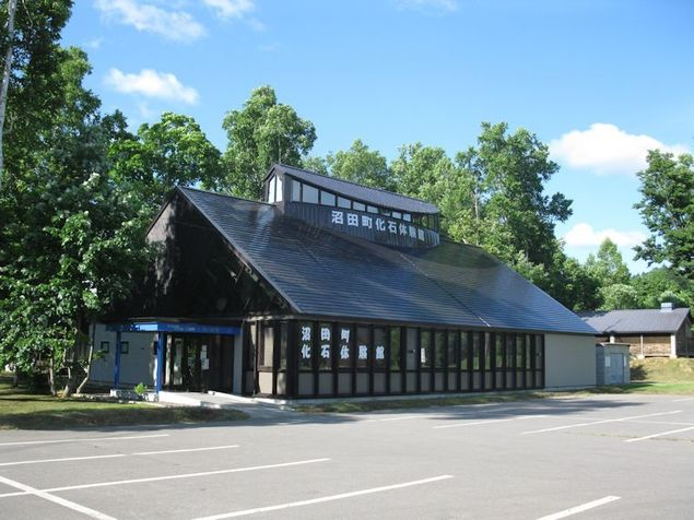 沼田町化石体験館