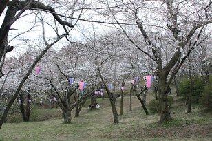 鶴舞公園(県立笠森鶴舞自然公園)