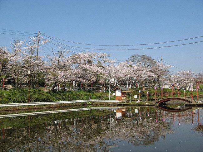 田町池端・天神山公園