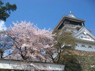 勝山公園(小倉城)