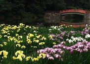 香川県立亀鶴公園