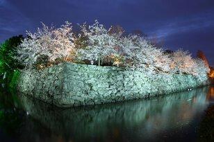 徳島中央公園
