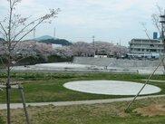 美祢さくら公園