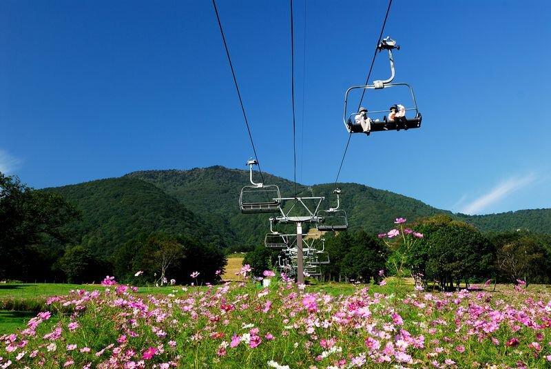 旬花咲く 黒姫公園