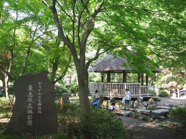 神奈川県立東高根森林公園