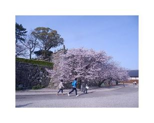 佐賀城公園