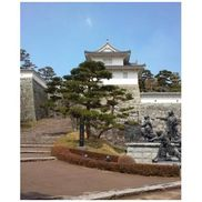 霞ヶ城公園(丸岡城)