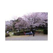 市民の森ふじやま公園