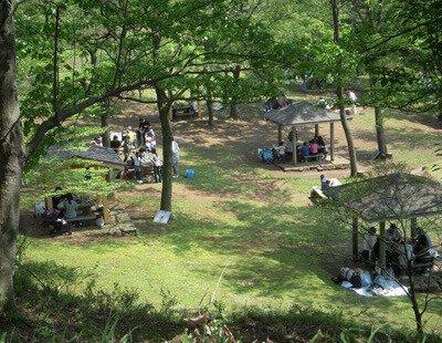 神奈川県立 七沢森林公園