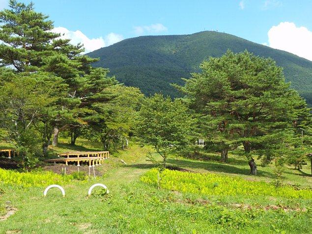 飛ヶ森キャンプ場