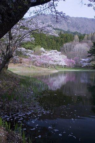 半田山自然公園