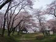 城山公園(雉岡城跡)