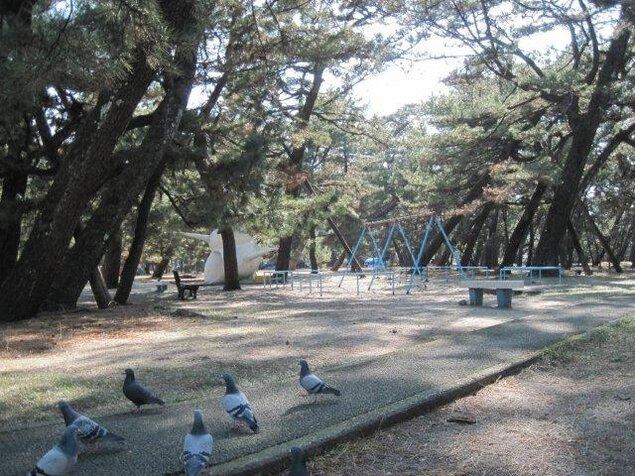 高知県立種崎千松公園