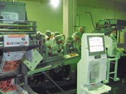 東洋ライス サイタマ工場