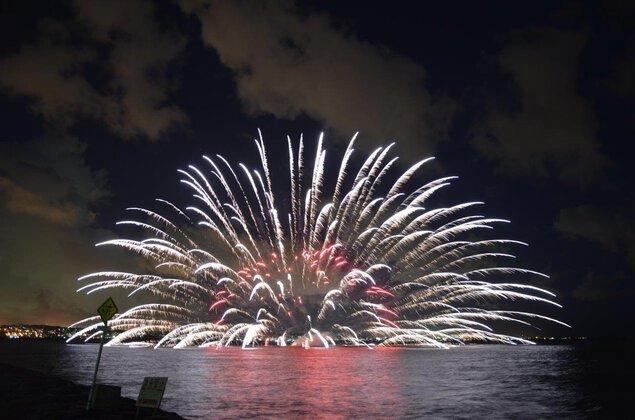 「シーボルトちゃたんカーニバル フリー 花火」の画像検索結果
